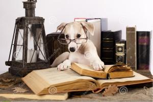 cani-vetri-con-i-libri-22477178